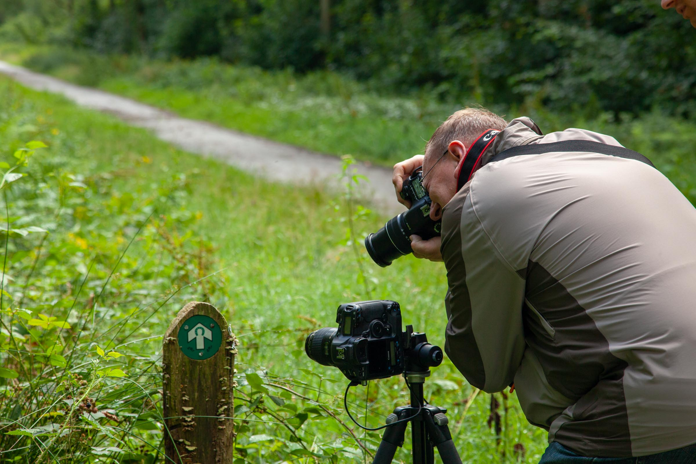 image from Natuurfotografie in het Liesbos