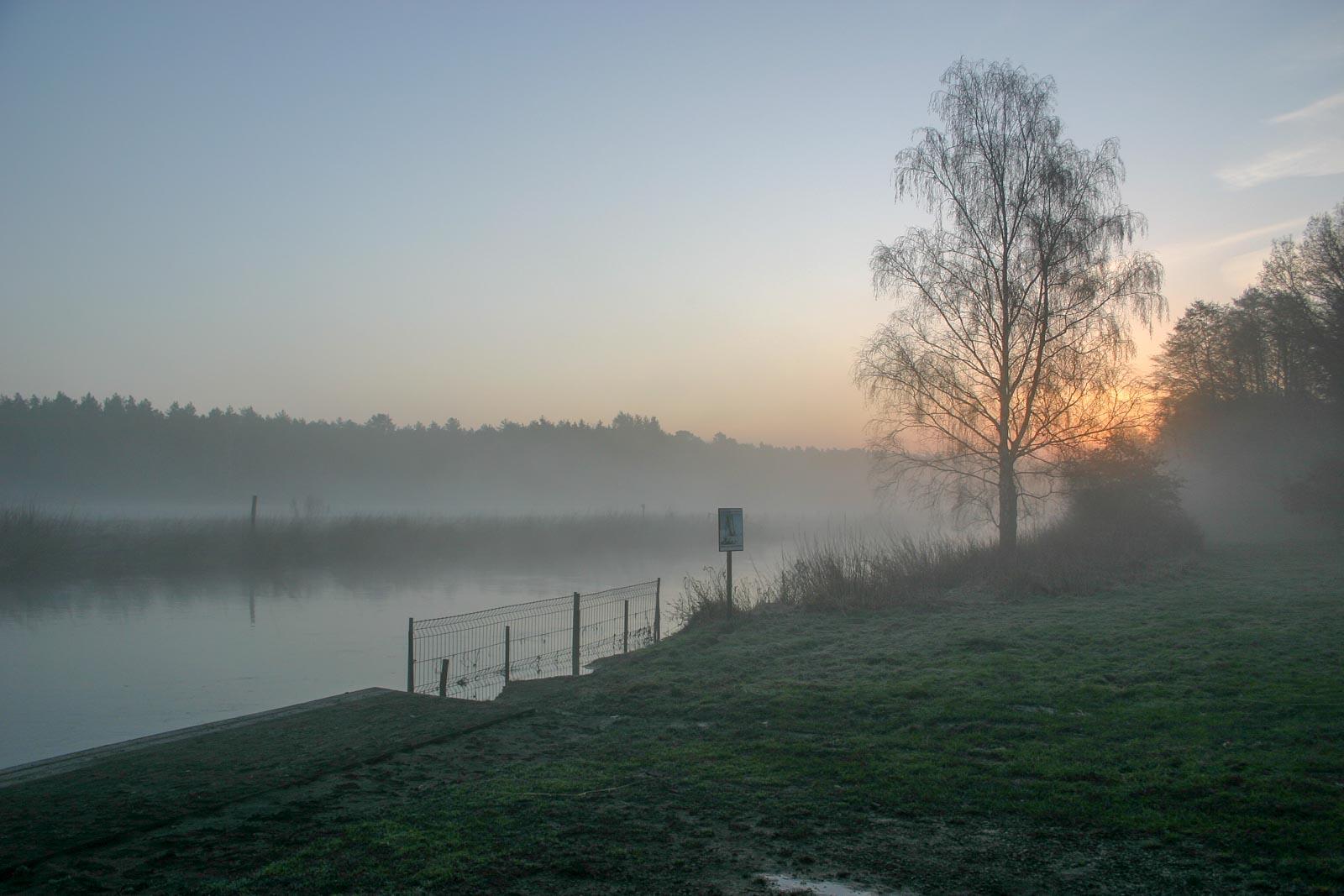 Natuurlandschap met bomen en meertje in de mist